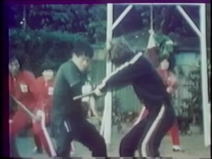 Bruce Lee's Deadly Kung Fu - Screenshot